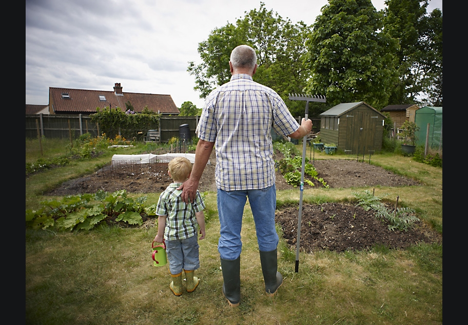 Retired male with Grandson at allotment