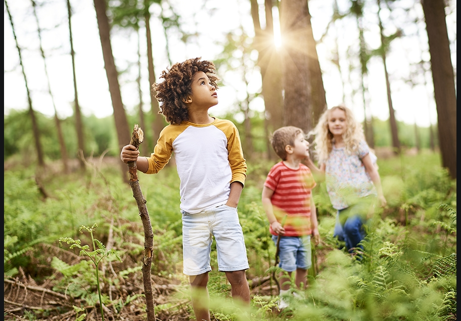 Children Walking in the Woods for Landal Holidays